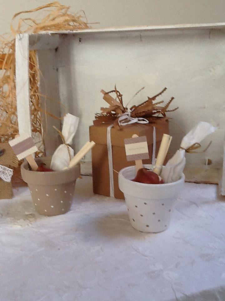 Popolare bomboniera ecologica vasetto con bulbo di fiore | Fairy Eco  XC96